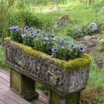 Garden-flowers Yoga For Fertility
